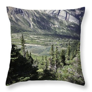Lake Mary Baker In Floral Park Throw Pillow