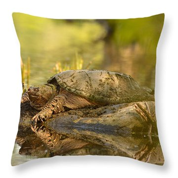 Lake Master Throw Pillow