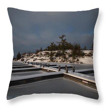 Lake Muskoka Throw Pillow