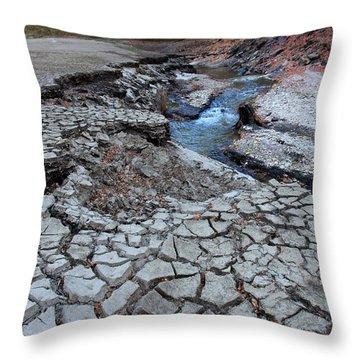 Lake No More Throw Pillow