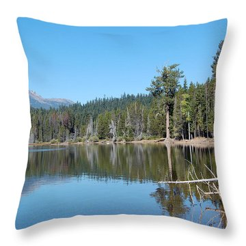Throw Pillow featuring the photograph Lake Of The Woods 4 by Debra Thompson