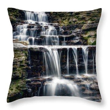 Lake Park Waterfall Throw Pillow