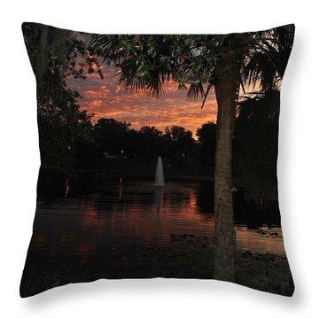 Lake Play Florida Throw Pillow