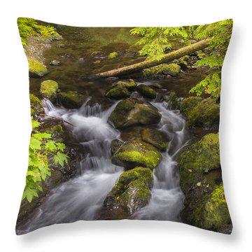 Lake Quinault Creek 2 Throw Pillow