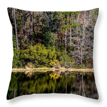 Lake Reflection  Two Throw Pillow
