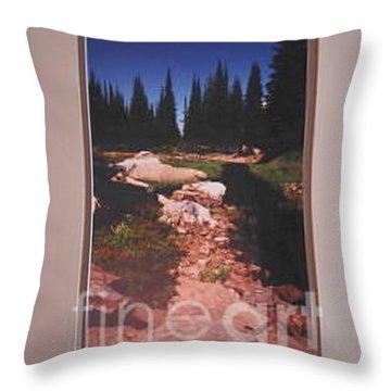 Lake Rivette Runoff Throw Pillow by Sharon Elliott