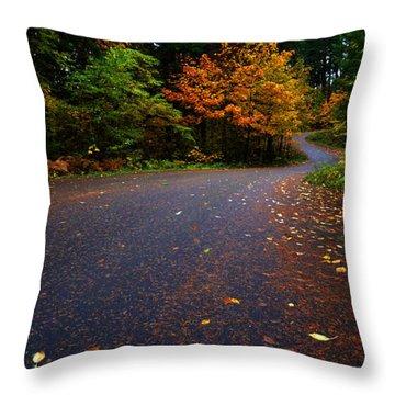 Lake Road Throw Pillow