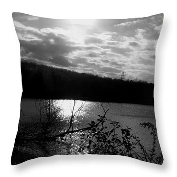 Throw Pillow featuring the photograph Lake  by Rose Wang