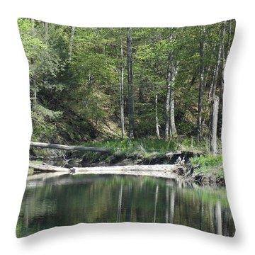 Stillness Throw Pillow by Catherine Gagne
