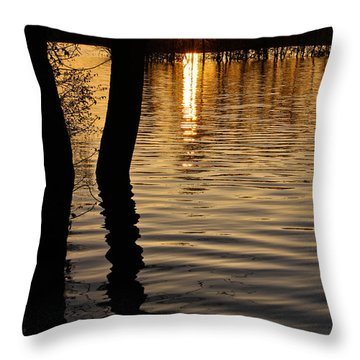 Lake Silhouettes Throw Pillow by Julie Andel