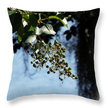 Throw Pillow featuring the photograph Lake Silver Berries by Chris Mercer