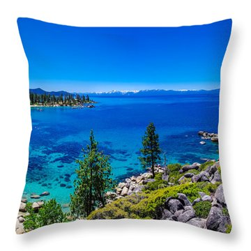 4 Throw Pillows