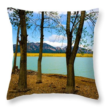 Lake Through The Trees Throw Pillow