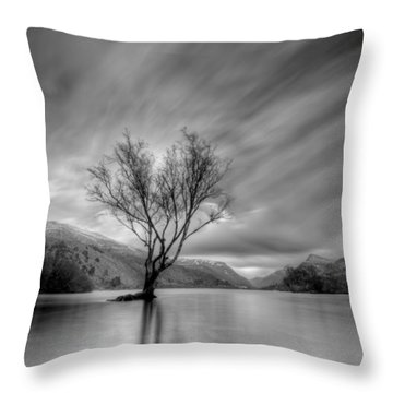 Lake Tree Mon Throw Pillow