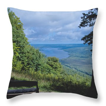 Throw Pillow featuring the photograph Lake Vista by William Norton
