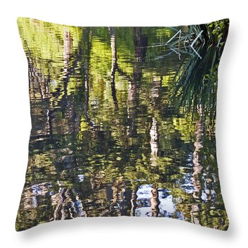 Throw Pillow featuring the photograph Lakeshore Reflections by Kate Brown