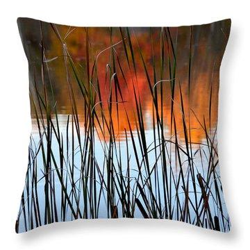 Lakeside Tales Throw Pillow