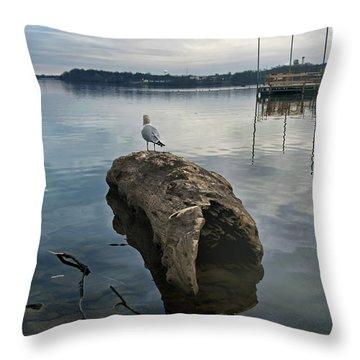Lakeside Throw Pillow by Steven  Michael