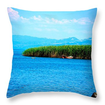 Throw Pillow featuring the photograph Lakeview by Zafer Gurel