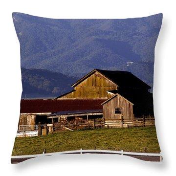 Lakeville Barn Throw Pillow