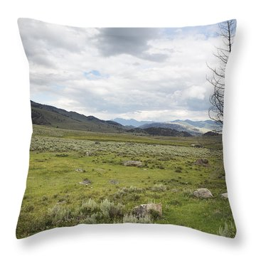 Lamar Valley No. 1 Throw Pillow by Belinda Greb