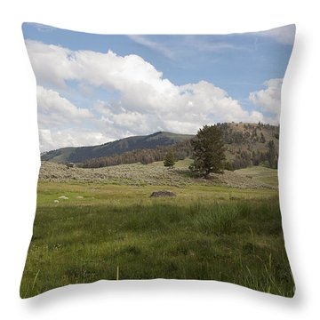 Lamar Valley No. 2 Throw Pillow by Belinda Greb