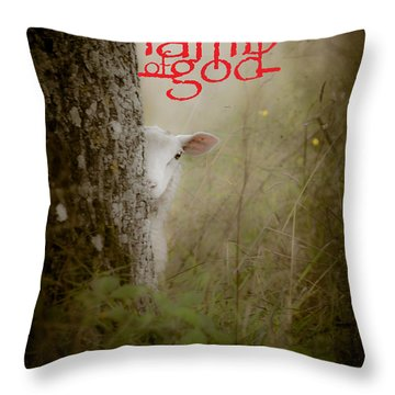 Lamb Of God Book Cover Throw Pillow by Loriental Photography