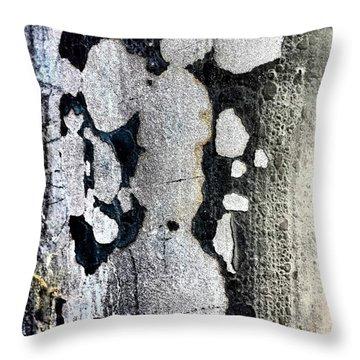 Lamppost 4b Throw Pillow