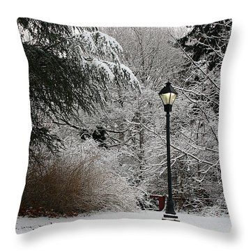 Lamp Post In Winter Throw Pillow