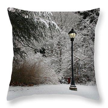Lamp Post In Winter Throw Pillow