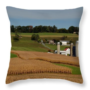 Lancaster County Farm Throw Pillow