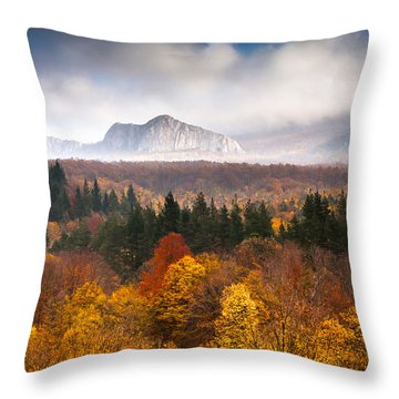 Land Of Illusion Throw Pillow