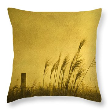 Land Of Stillness Throw Pillow
