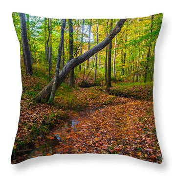 Land Of The Fairies Throw Pillow