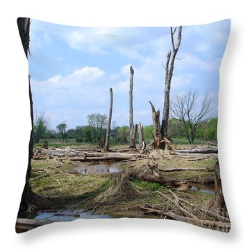 Throw Pillow featuring the photograph Land Of The Lost by Jane Ford