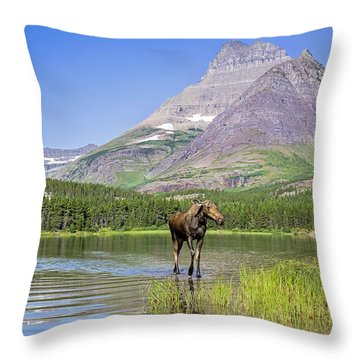 Land Of The Moose Throw Pillow by Jack Bell