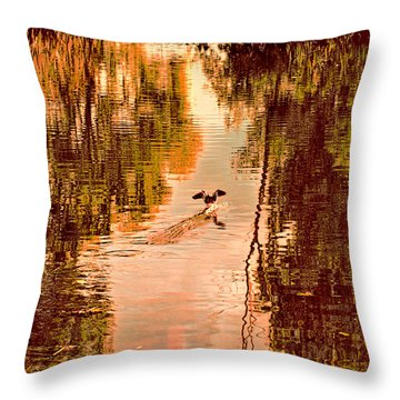 Landing Duck Absrtact Throw Pillow