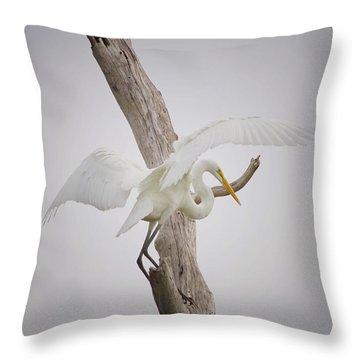 Landing Throw Pillow by Kim Hojnacki