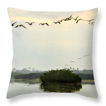 Landing Pattern Throw Pillow by William Beuther