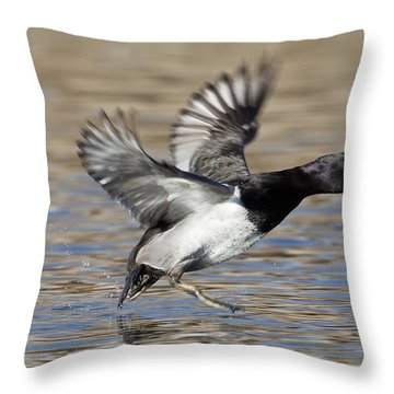 Landing Ring-neck Throw Pillow by Ruth Jolly