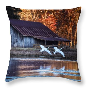 Landing Trumpeter Swans Boxley Mill Pond Throw Pillow