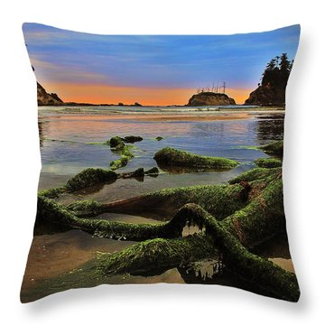 Lands End Throw Pillow by Benjamin Yeager