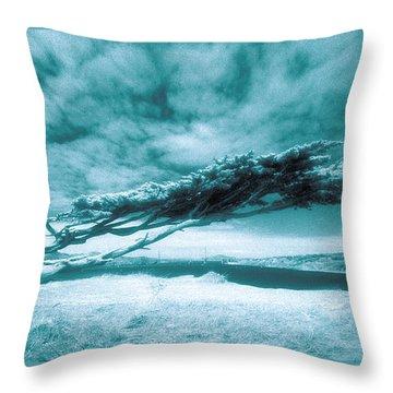 Lands End Throw Pillow by Daniel Furon