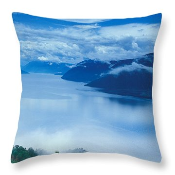 Landscape Throw Pillow by Anonymous