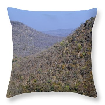 Landscape At Panna National Park In India Throw Pillow by Robert Preston