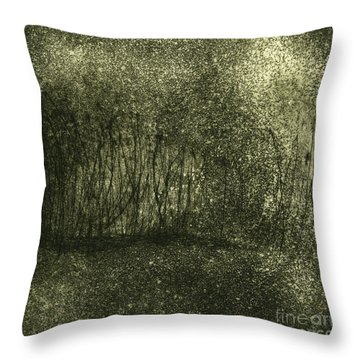 Mystical Landscape - Plants -reed - Botany - Biotope - Habitat - Etching - Fine Art Print - Stock Image Throw Pillow