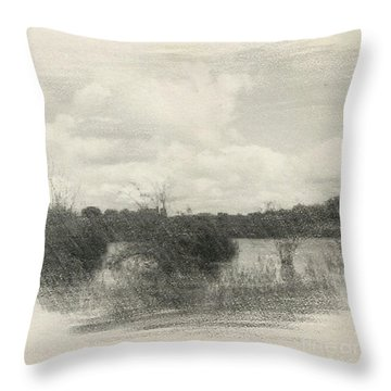 Landscape In Patches Throw Pillow