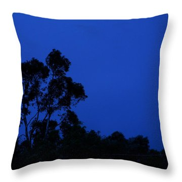 Throw Pillow featuring the photograph Blue Landscape by Mark Blauhoefer