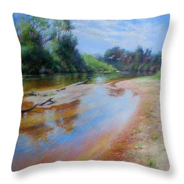 Landscape Throw Pillow by Nancy Stutes
