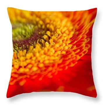 Landscape Of A Flower Throw Pillow